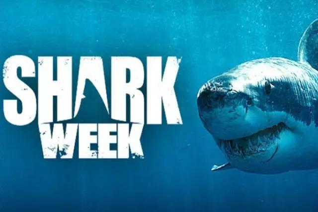 hitcase shark week1